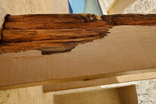 PC Woody Exterior Rafter Repair Before 1