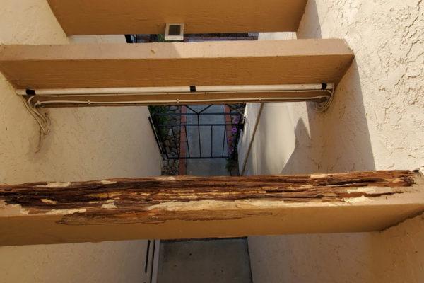 PC Woody Exterior Rafter Repair Before 2