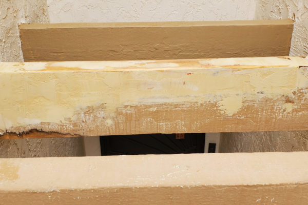PC Woody Exterior Rafter Repair Treatment